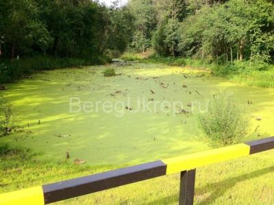 Очистка и укрепление берега в Барвихе
