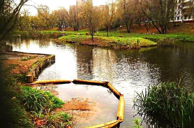 Строительство пруда Бехтеревского и укрепление берега лиственницей